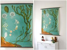 Vintage botanical pull down chart Jung Koch Quentell school map seaweed ocean West German print by MightyVintage on Etsy https://www.etsy.com/listing/151620572/vintage-botanical-pull-down-chart-jung