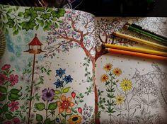 #tajemnyogród #tajemniczyogrod #tajemniczyogród #secretgarden #secretgardencoloringbook #basford #johannabasford #sztukakolorowania #coloringforadults #colouringforadults #kolorowankidladoroslych #adultcoloring #desenhoscolorir #boracolorirtop #colouring_secrets #docepapelatelierr #bayan_boyan #nossojardimsecreto #coloringaddict #coloringart #nossa_vida_colorida #secretgarden #secret_darden