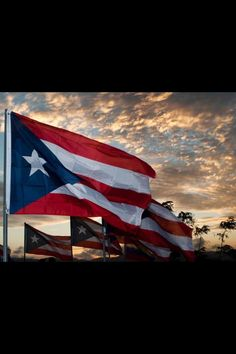 Flag of Puerto Rico. Puerto Rico, Pr Flag, Greater Antilles, Puerto Rican Culture, Enchanted Island, National Symbols, Flags Of The World, Caribbean Sea, My Heritage
