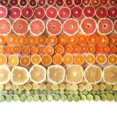 food gradient