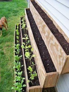 Urban Garden Design The GreeneBerger: Urban Gardening: Growing Food in Unlikely Places Garden Boxes, Garden Planters, Balcony Garden, Greenhouse Plants, The Secret Garden, Organic Gardening, Urban Gardening, Vegetable Gardening, Container Gardening