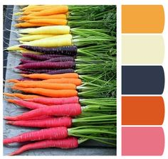 Color Palette by CharlotteInteriors on Etsy