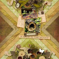 Collections :: T :: The North Woods by Aimee Harrison :: The North Woods Page Kit