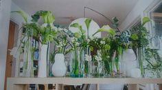 Vihreä suora Glass Vase, Flora, Design Inspiration, Interior, Plants, Spring, Home Decor, Decoration Home, Indoor