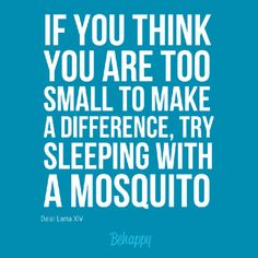 """If you think you are too small to make a difference, try sleeping with a mosquito"" by Dalai Lama XIV"