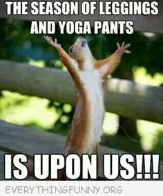 The season of leggings and yoga pants is upon us.