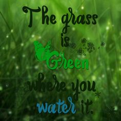 #green #grass #water #quotes