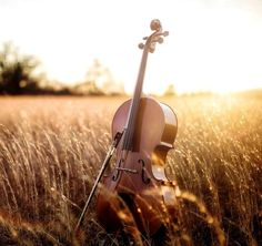 If Ruth played an instrument, surely it would be a cello, with its warm, rich, heart-stirring tone