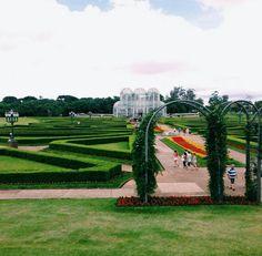 Que tal fazer uma visita ao Jardim Botânico em Curitiba? ❤