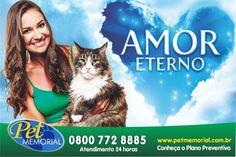 Primeiro Crematório de Animais - Cemitério de Animais - Pet Memorial…