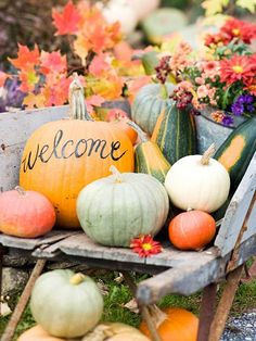 """Beautiful and festive way to welcome guests to your fall wedding! Fall display with a """"Welcome"""" pumpkin, flowers, gourds, and other seasonal decor. Perfect for a fall wedding! Halloween Chic, Outdoor Halloween, Halloween Party, Halloween Stuff, Costume Halloween, Vintage Halloween, Halloween Makeup, Halloween Crafts, Autumn Decorating"""