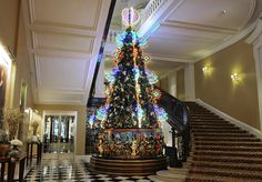 Christmas tree at Claridges London - Google Search