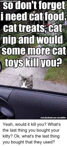 Remember I need cat food, cat treats, Cat nip and would Some more cat toys kill Nou www.facebook.com/cat.addicts Yeah, would it kill you? What's the last thing you bought your kitty? Ok, what's the last thing you bought that they used?