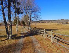 Joe's Retirement Blog: Before the Blizzard, Bartlett Pond, Manomet, Chiltonville, Plymouth, Massachusetts, USA