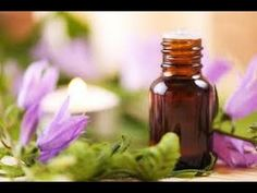 Aromatherapy and Massage is a popular form of natural healing work that involves using aromatic essential oils to promote health and well being. Aromatherapy And Massage . Essential Oil Companies, What Are Essential Oils, Oregano Oil Benefits, Aromatherapy Oils, Carrier Oils, Migraine Relief, Natural Pain Relief, Natural Cosmetics, Diy Beauty