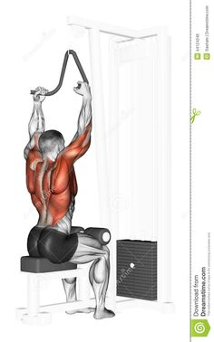 Exercising. End Of The Upper Block Narrow Grip Stock Illustration - Image: 44124246