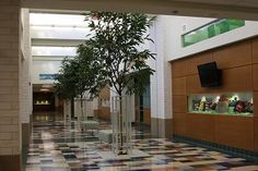 elementary school design ideas hallways - Google Search