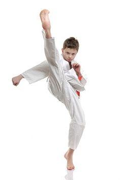 Taekwondo Animals.com - Free information on Taekwondo forms, kicks, sparring & more - Taekwondo Animals