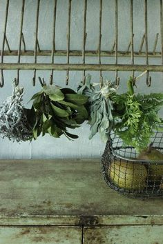 .The art of drying herbs........