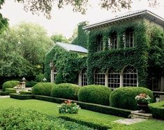 I adore houses covered in vines, especially in moderate temperatures where the vines don't become bare...so pretty!