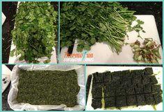 thermomixfrozenfreshherbs1 ThermoFun   Everyday Basics   Freezing Fresh Herbs