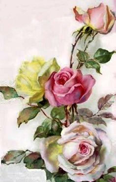 #Roses : #Rose #Flower