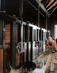 Carolyne Roehm with her dogs in her fabulous horse barn complex at Weatherstone.