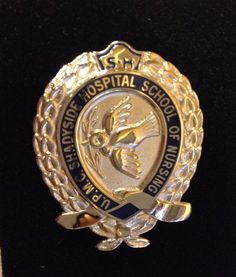 UPMC Shadyside School of Nursing Pin. Nursing Pins, Ob Nursing, Nursing Schools, Nursing School Graduation, Graduate School, Pa School, Vintage Nurse, Nurses Day, Nurse Badge