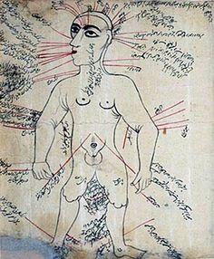 ersian anatomical illustrations depicting venous figures