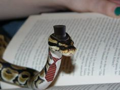 snakes in hats - Google Search