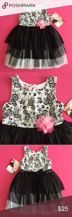 New Nannette Party Dress Beautiful party dress by Nannette baby. White & black floral lace yolk fully lined. Black satin underskirt topped in 1 row of white tulle & 2 rows of black. Black satin satin sash ties in the back. Bodice is nylon & spandex, skirt is poly. Machine wash inside out, hang dry. NWT Nannette Baby Dresses