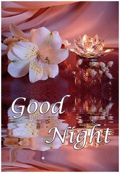 good night wishes * good night & good night sweet dreams & good night quotes & good night quotes for him & good night blessings & good night wishes & good night images & good night gif Good Night Flowers, Beautiful Good Night Images, Good Night Images Hd, Good Night Prayer, Good Night I Love You, Good Night Friends, Good Night Blessings, Good Night Gif, Good Night Wishes