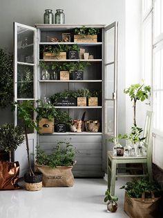 Pour donner un esprit brocante à votre intérieur vous pouvez vous servir de cagette en bois, caisse à vin ... et mettre des plantes à l'intérieur.