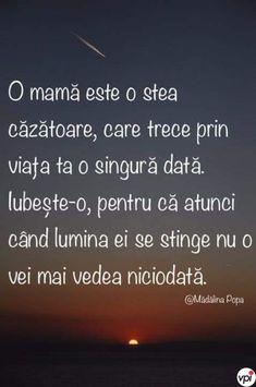 8 Martie, Facebook
