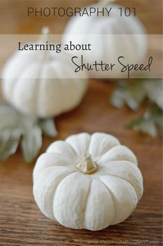 anderson + grant: Photography 101 | Learning about Shutter Speed