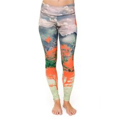 OK, I'll admit this has nothing to do with Iyengar Yoga.  But these are some inspirational yoga pants, and my birthday is coming up...;) (http://www.onzie.com/graphic-legging/)