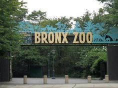 The Bronx Zoo!  Loved going there when i was a kid.