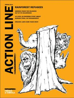 2014 Spring Edition of Act'ionLine Magazine Now Available