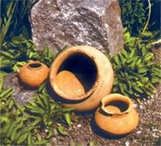 Pit-Grave culture artefacts found at Storozhova Mohyla near Dnipropetrovsk.