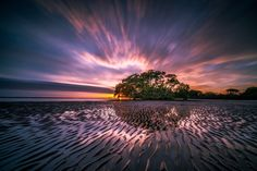 Ultimate Landscape Photography Guide for Stunning Results Beautiful Landscape Photography, Landscape Photos, Beautiful Landscapes, Landscape Grasses, Landscape Timbers, Landscape Fabric, Beach Landscape, Landscape Artwork, Landscape Design