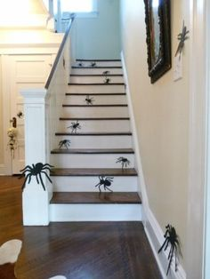 Halloween decorations :  IDEAS & INSPIRATIONS  Super Easy, No Conniption Halloween Decorating