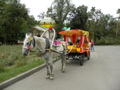 horse and cart in front of the Ascension Cathedral/ Zenkov Cathedral - Almaty, Kazakhstan