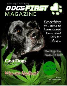 Dogs First Magazine Zoo Animals, Shelf, App, Magazine, Guys, Shelving, Shelving Units, Apps, Warehouse