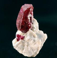 Dealer in Fine Mineral Specimens, Gem Crystals, and Rare Gemstones Rare Gemstones, Minerals And Gemstones, Rocks And Minerals, Ruby Crystal, Ruby Stone, Gemstone Colors, Gem Stones, Jewels, Geology