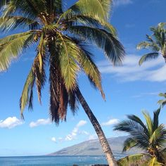 Another beautiful morning in Hawaii!