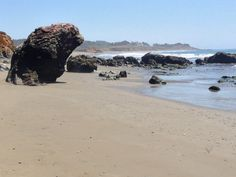 San Simeon State Beach in Cambria, CA