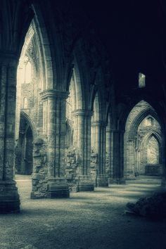 yama-bato:    aubade:    Tintern Abbey (by aksnipil)  http://www.flickr.com/photos/aksnipil/4875396174/sizes/l/in/pool-52239795296@N01/