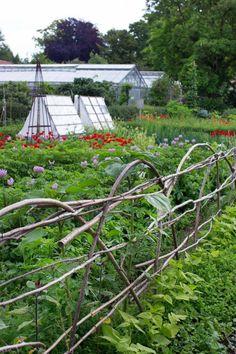 Capellagården – ett ekologiskt paradis | Lantliv.com