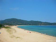 Παραλία Συκιά, χωριό σε Σιθωνία - μικρό θέρετρο με αμμώδεις παραλίες Beach, Water, Outdoor, Gripe Water, Outdoors, The Beach, Beaches, Outdoor Living, Garden