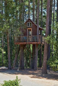 Treehouses by Christin C. | Redfin